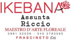 1 Gold – Ikebana – Frascineto (CS)
